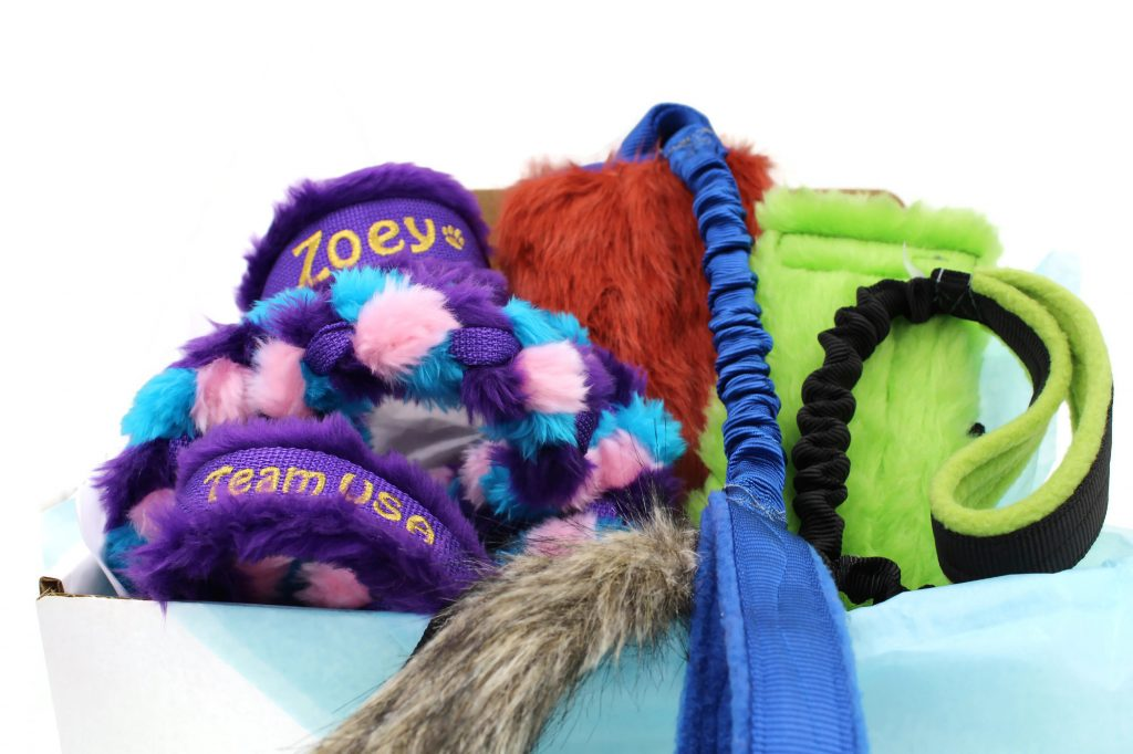 toy-only-dog-subscription-box