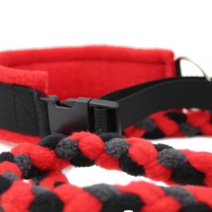 Best-slip-lead-leash-for-dogs