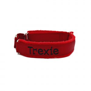 martingale-dog-collar