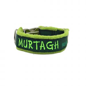 dog-collar-with-name