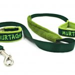 dog-collar-and-leash-set